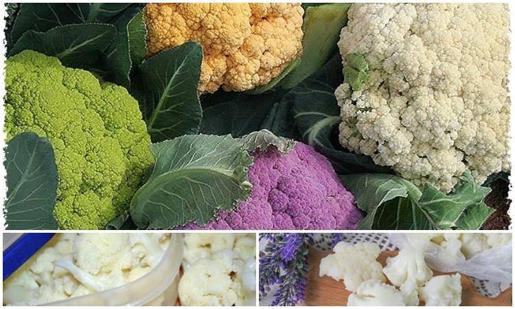 Как правильно заморозить цветную капусту в домашних условиях на зиму