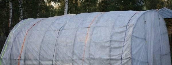 Укрывной материал для грядок: как выбрать для использования в теплице