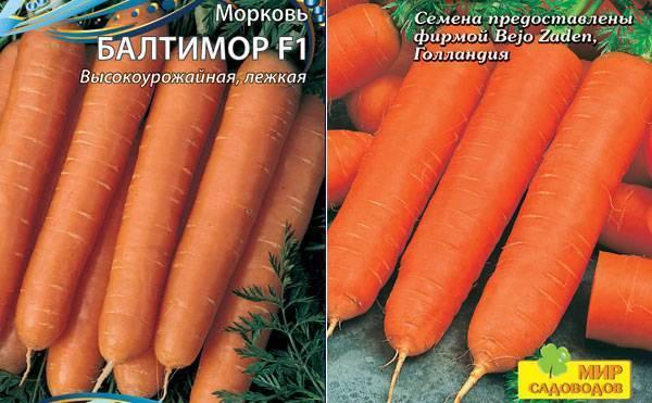 Выращивание моркови балтимор f1