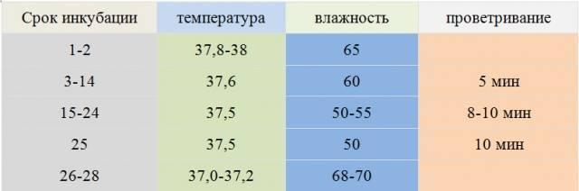 Таблица температур для вывода яиц в инкубаторе