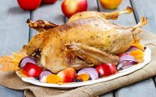 Мясо гуся: калорийность, польза и вред, что можно приготовить, сколько варится
