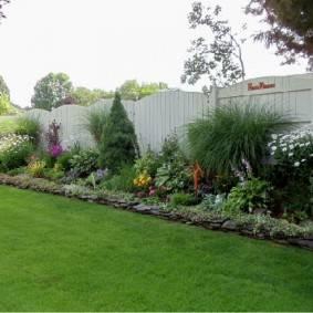 Живая изгородь, что посадить под забором или вместо него: 10 подходящих кустарников