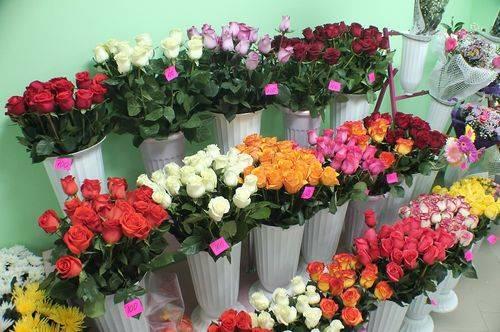 Как хранить тюльпаны – нюансы использования сухого и влажного метода
