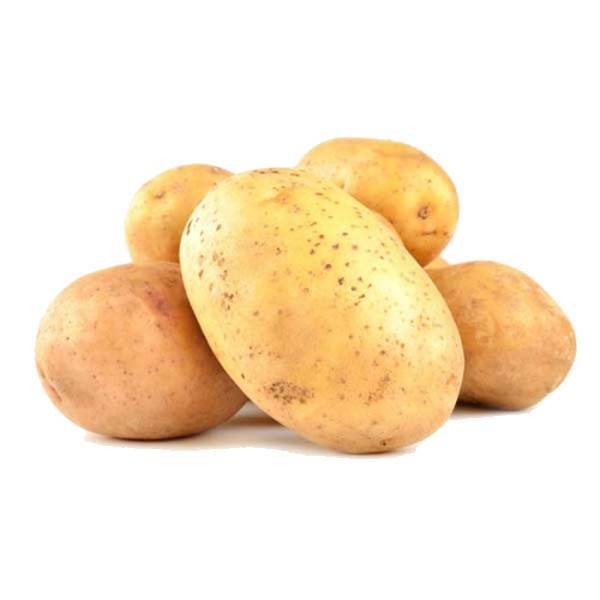 Картофель сорта кемеровчанин: описание и характеристика, фото и отзывы, вкусовые качества семенных плодов элита