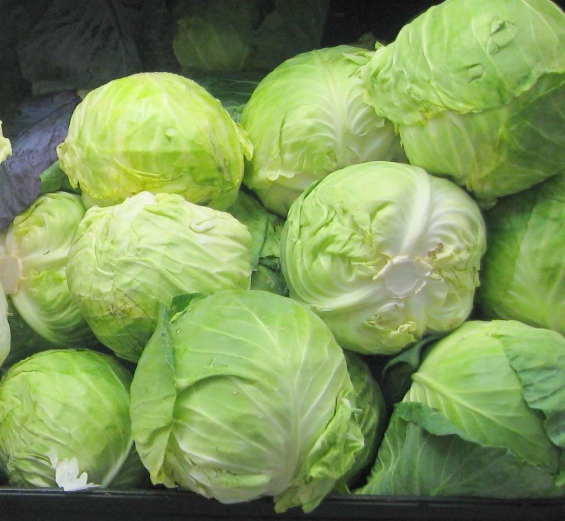 Как правильно хранить капусту в холодильнике — нужен ли пакет?