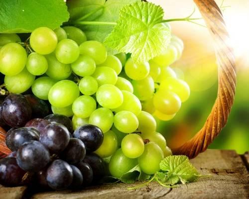 Калорийность винограда зеленый кишмиш: сколько сахара содержится