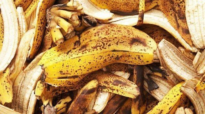 Удобрение для комнатных и огородных растений из банановой кожуры