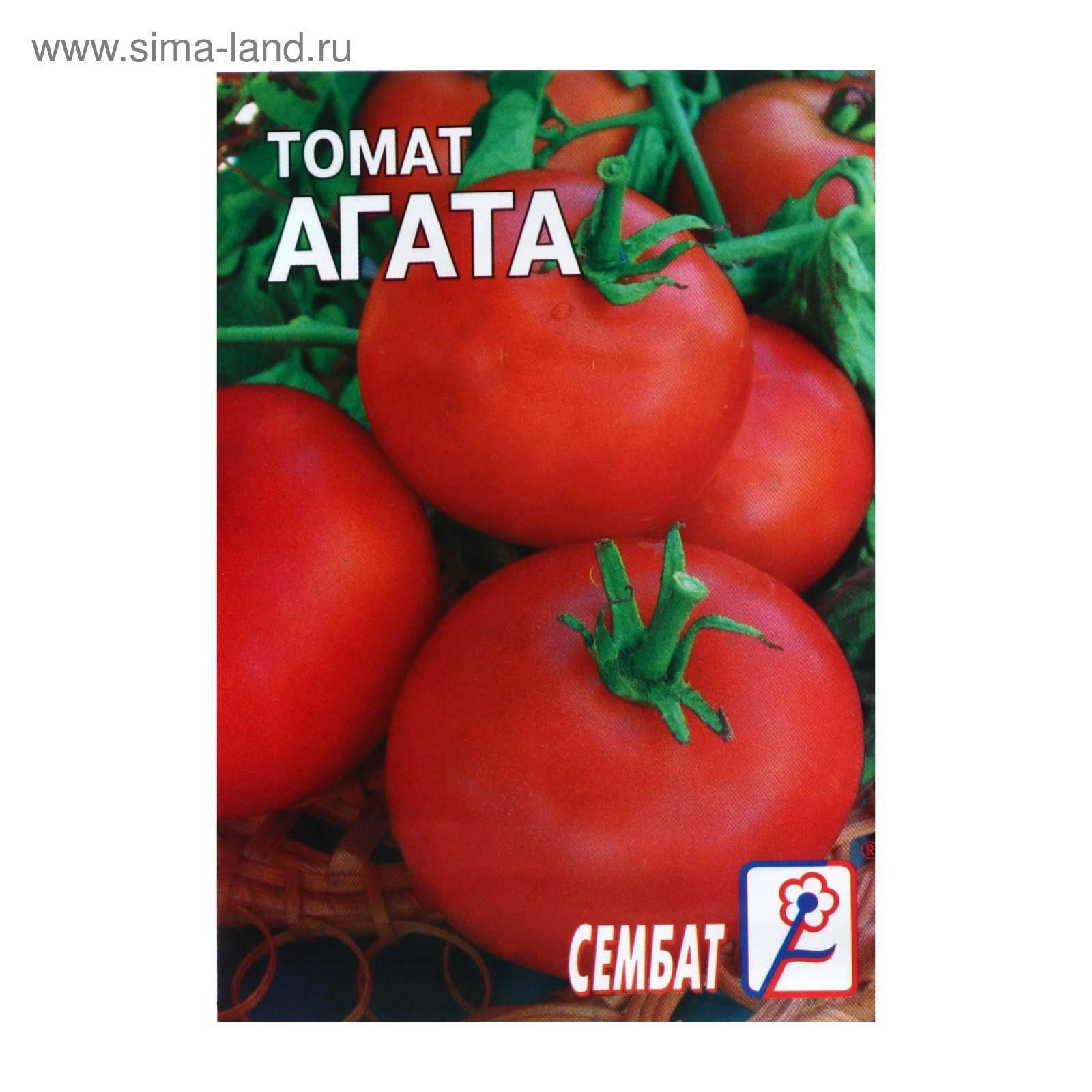 Томат агата: описание сорта, отзывы, фото, урожайность | tomatland.ru