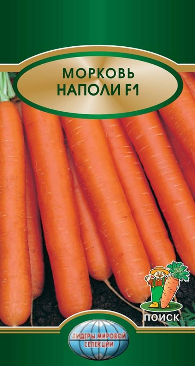Балтимор сорт моркови