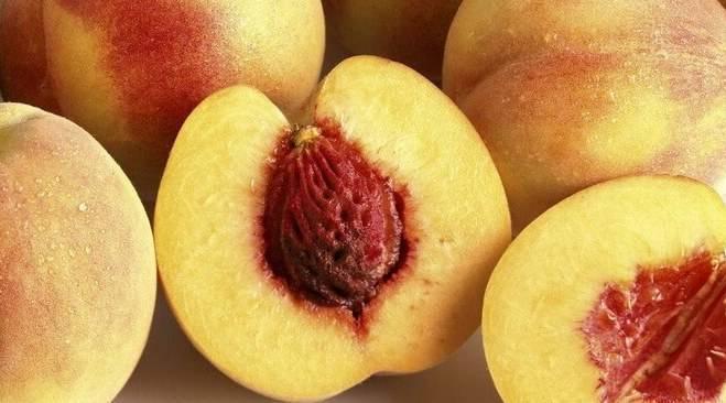 Лучшие сорта персиков, которые выращивают в россии, с фото и описанием