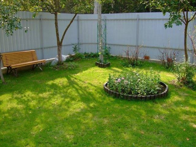 Как сделать газон на даче своими руками: какой газон выбрать, инструкция по созданию газона на даче