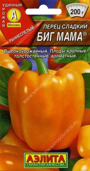 Перец биг мама: описание сорта, особенности выращивания