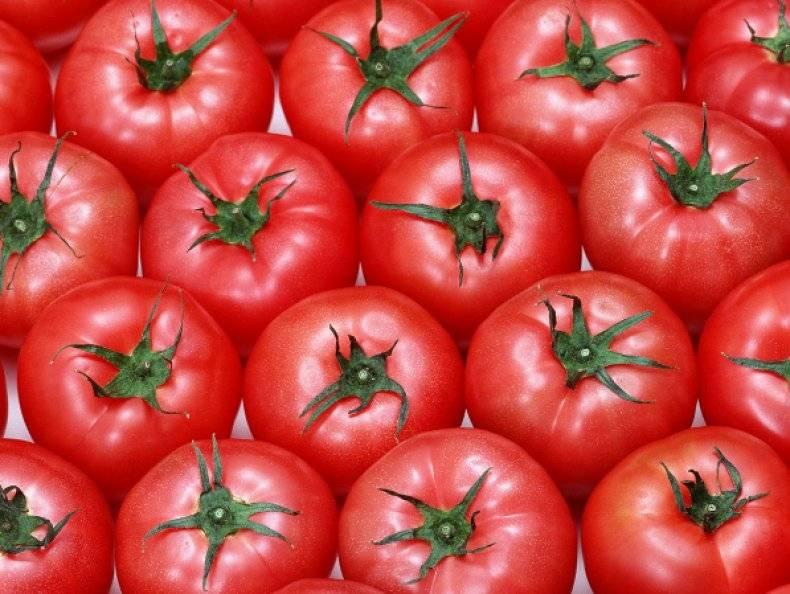 Помидор: это овощ или ягода, ответ с точки зрения ботаники
