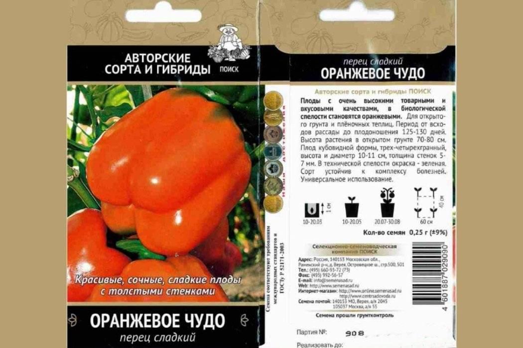 """Перец """"оранжевое чудо"""": характеристика и описание сладкого сорта культуры, агротехника выращивания, сбор урожая"""