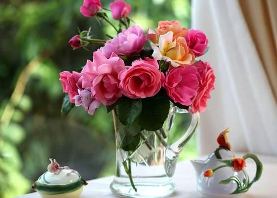 Как сохранить розы в вазе с водой дольше: что можно добавить, как хранить срезанные розы