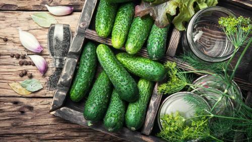 Огурец с кожурой, сырой: калорийность на 100 грамм — 15 ккал. белки, жиры, углеводы, химический состав.