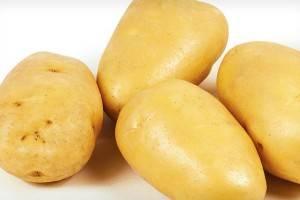 Описание сорта картофеля Метеор — особенности выращивания