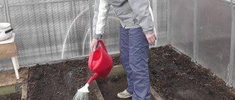 Обработка земли в теплице осенью и весной: практические советы