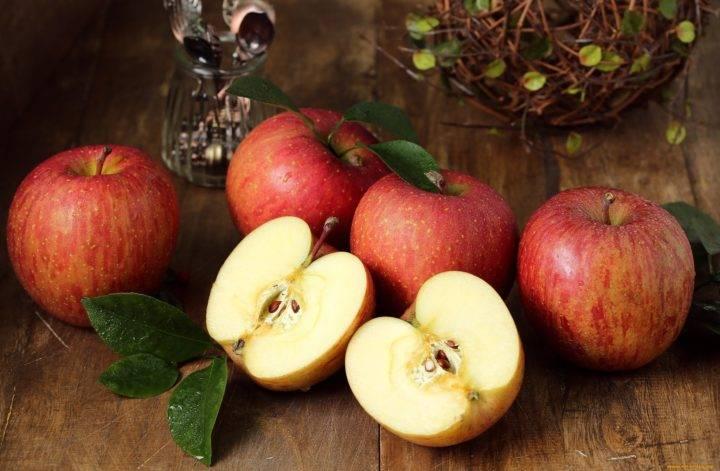 Свежие яблоки круглый год, или как хранить плоды в погребе на зиму