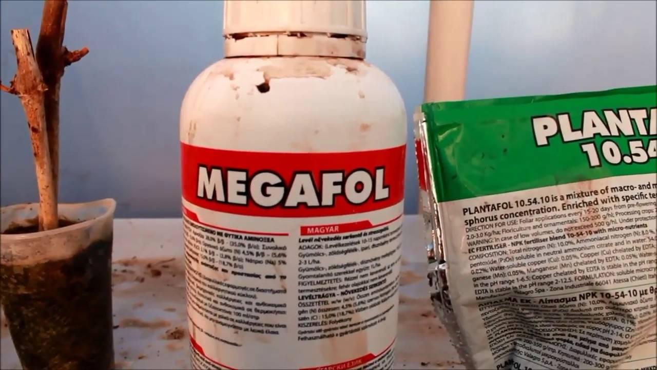 «мегафол» — инструкция по применению. когда применять?