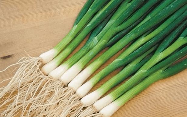 Как правильно омолодить и размножить лук-батун? — ботаничка.ru