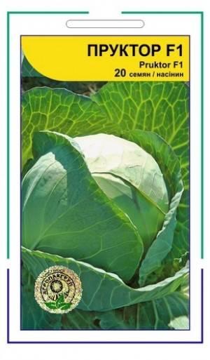 Значительно улучшенный по всем параметрам сорт капусты — профессор f1: описание и отзывы