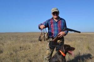 Как и когда можно добыть перепелов с собакой, методом «вытаптывания» и на вабу – видео охоты
