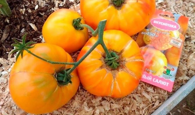 Томат медовый спас: описание сорта, отзывы, фото, урожайность | tomatland.ru
