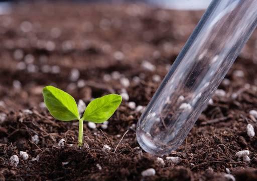 Аммофос: применение удобрения, состав, формула