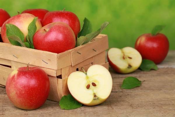Как сохранить яблоки на зиму свежими в домашних условиях: видео, отзывы