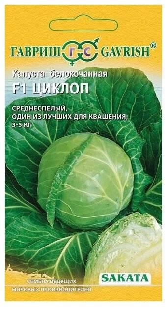 Читать книгу как вырастить отличный урожай овощей и бахчевых. рецепты, проверенные временем павла штейнберга : онлайн чтение - страница 1