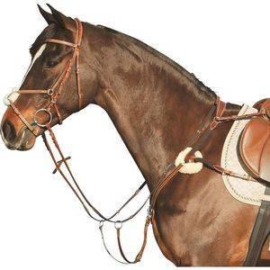 Что такое уздечка для лошади | энциклопедия домашних животных
