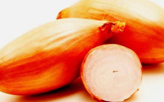 Лук бамбергер: описание сорта и характеристика севка, можно ли сажать под зиму и правила посадки и ухода, отзывы огородников и фото луковиц