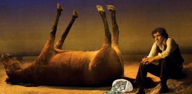 К чему снится лошадь женщине