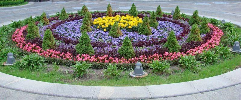 Рабатка своими руками - пример оформления и посадки цветов | сайт о саде, даче и комнатных растениях.