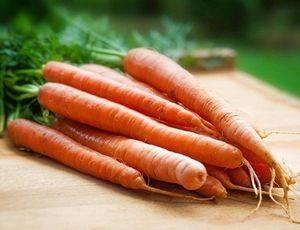 Два вопроса о моркови?