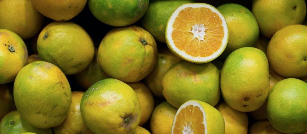 Апельсины — минеральный состав