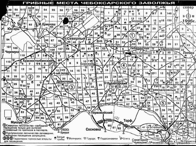 Карта грибных мест Чувашии