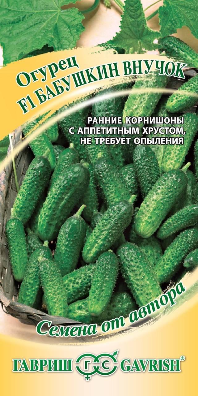 Огурец бабушкин внучок f1: характеристика и описание гибридного сорта с фото