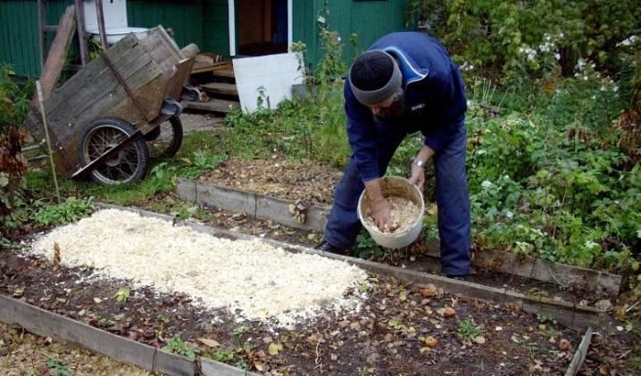 Опилки как удобрение. с чем смешать опилки для удобрения почвы?