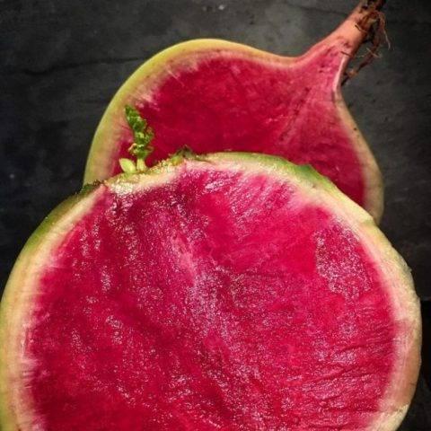 Арбузная (красная) редька: сорта, полезные свойства и противопоказания