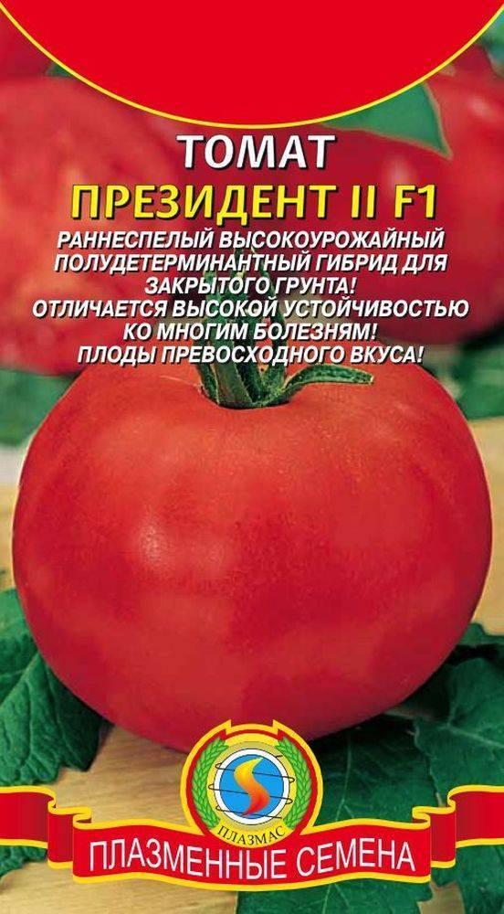 Хорошие урожаи ароматных плодов — томат знатный толстяк f1: отзывы об урожайности, описание сорта