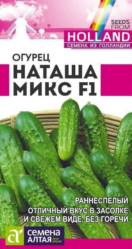 Гибридный сорт огурцов «наташа f1»: выращивание от посева до сбора урожая