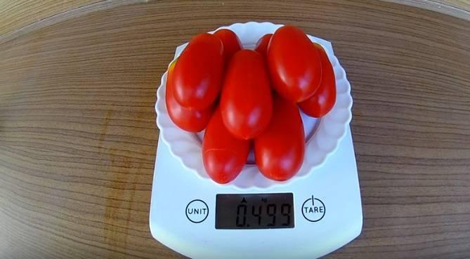 Нюансы выращивания и характеристика томата французский гроздевой