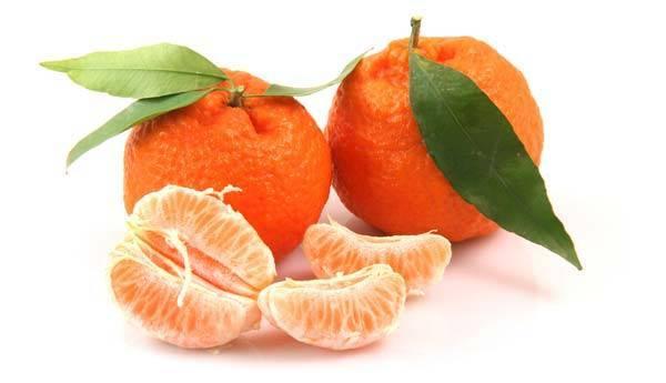 Польза и вред мандаринов для здоровья, калорийность | zaslonovgrad.ru