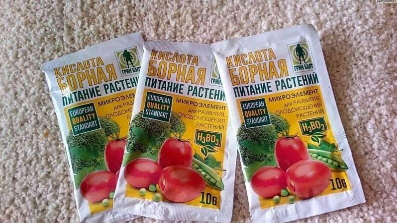 Борная кислота для растений: применение на помидоры, огурцы, перцы, как опрыскивать растения, народные средства