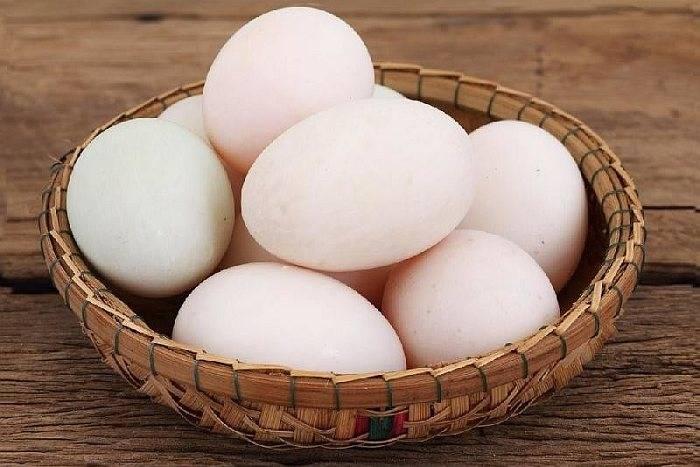 Утиные яйца: польза и вред, как готовить | пища это лекарство