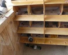 Гнезда для голубей своими руками: описание, фото
