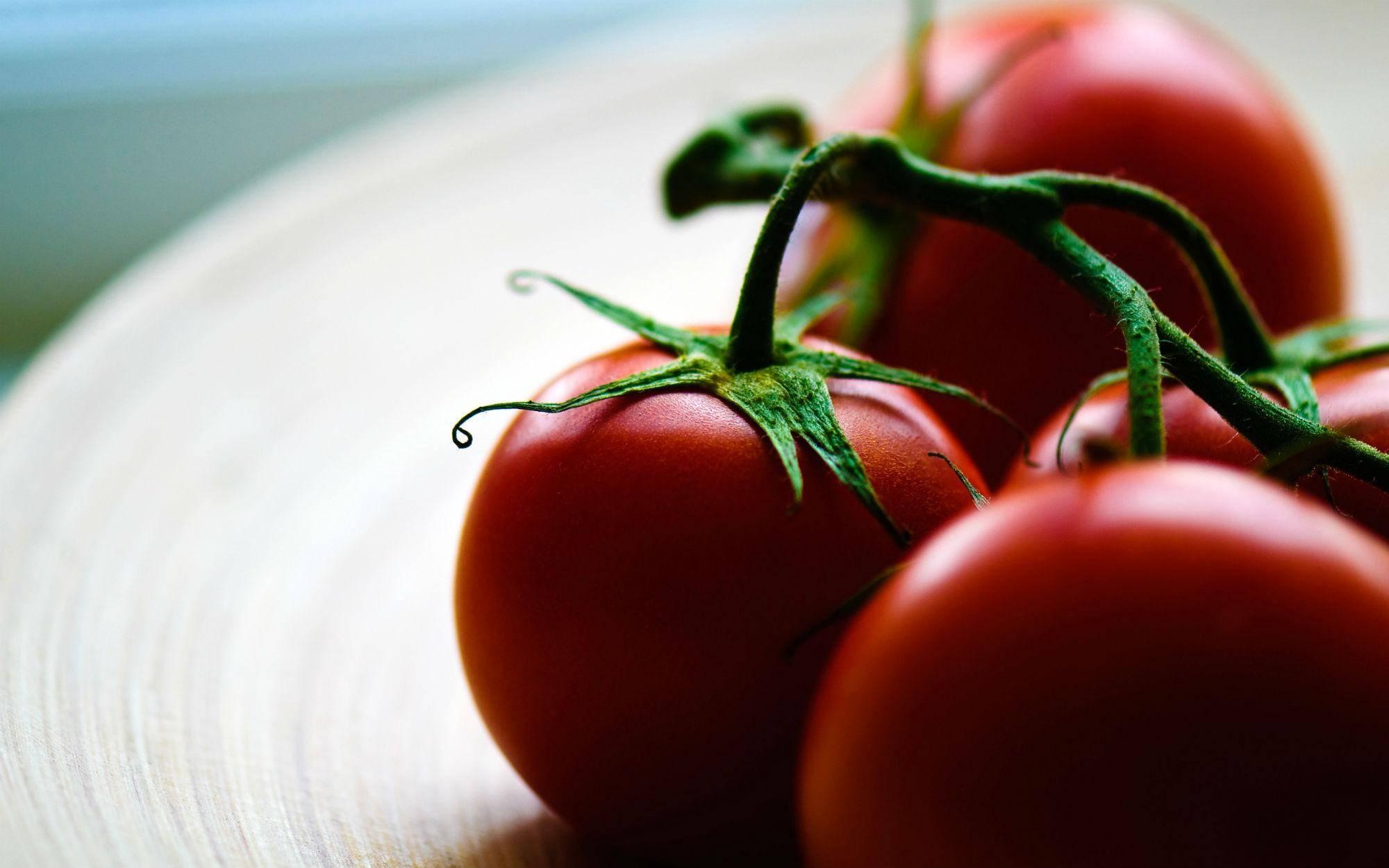 Зола как удобрение для томатов, отзывы садоводов