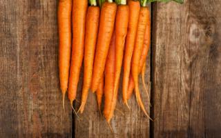 История появления моркови